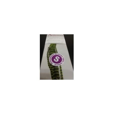 Extensión pluma. 3 Uds. Talla S. Verde lima
